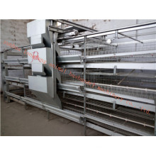 Certificado galvanizado automático da gaiola do Pullet de ISO9001