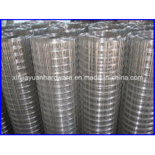1′′x1′′ Hole Size Galvanized Welded Wire Mesh Used for Fencing