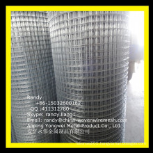 "YW-- 1/2"" galvanized wire mesh/Skype: randy.liang1"
