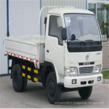 Camion léger LHD / RHD Dongfeng