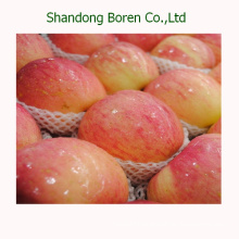 Export Fresh Red Star Apple From China
