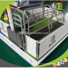 Hecho en China Farrowing Crate para la venta Pig Equipment Pig Farm
