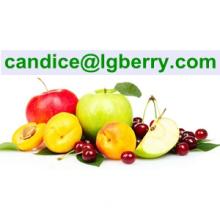 Formulation blend juice powder instant fruit juice powder