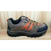 Los zapatos casuales más vendidos del deporte de la malla superior del color de la manera superior venden