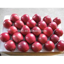 Chino Tianshui Red Huaniu Apple / Dulce Re huaniu manzana