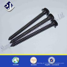 Parafuso de madeira de fixação DIN571 (alta qualidade)