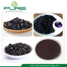 Natural Dried Black Goji Berry Extract Powder