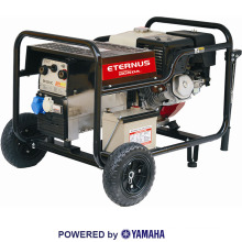 High-Tech 4kw Portable Power Generator (EW200DC)