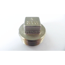 Ss Pipe Fittings-Square Plug