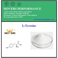 Factory Supply Amino Acids L-Tyrosine au meilleur prix