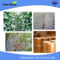 Kresoxim Methyl 50% WDG produits agrochimiques fongicides