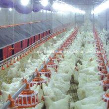 Automatisches Geflügel, das Nest für Züchter und Schicht legt