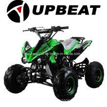 Cheap Quad Bike Chinese ATV 50cc, 70cc, 90cc, 110cc, 125cc