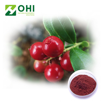 Cranberry Extract Anthocyanidin Poeder
