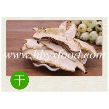 Dried Shiitake Champignon Mushroom Slice