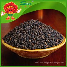 Venta al por mayor de Pimienta negra seca Procesamiento crudo de pimienta negra