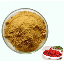 Hot goji berry beku bubuk kering / Fruit Juice Powder