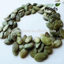 Plantation chinoise de graines de citrouille