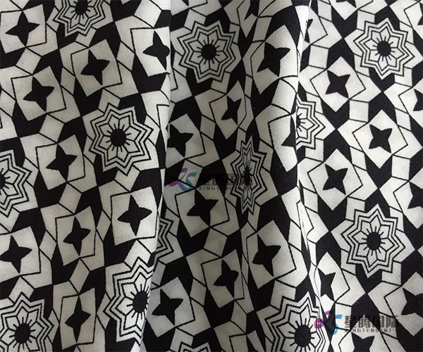Popular Apparel Fabric