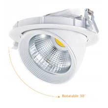 LED Rotatable Recessed Spotlight 30W 2100lm COB PF>0.9 AC100~240V