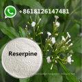 99% Purity Reserpine Powder CAS 50-55-5 Russian 80mesh Pharmaceutical