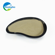 Additif pour l'alimentation biologique Bacillus Subtilis Fermentation