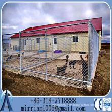 Perreras de perros de alambre galvanizado / cajón de perro de tubo / jaulas de mascotas / perreras