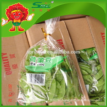 Chinese Frozen snow pea