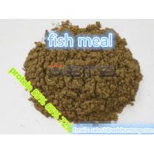 Proteína em pó farinha de peixe de alta qualidade