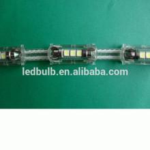 Feux à rayons LED Festoon, éclairage à bande led adressable, bande lumineuse led