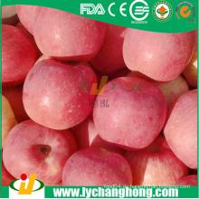 Fuji Äpfel besten Preis von China Lieferanten