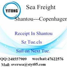 Shantou Port LCL Konsolidierung nach Kopenhagen