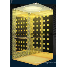 Luxurious Passenger Elevator with Good Price (JQ-N004)
