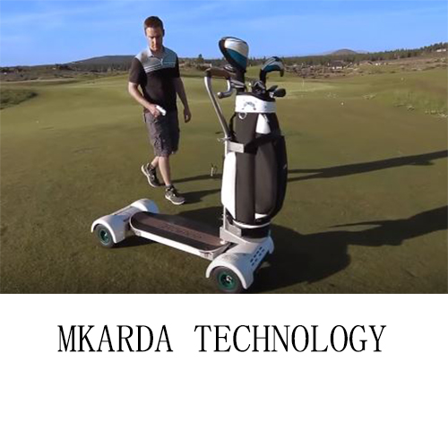 Golf electric scooter