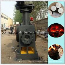 Machine mécanique de briquette de biomasse de Lby-500 emboutissant le piston