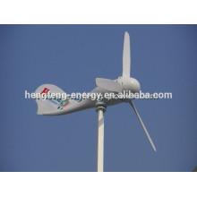 Низкая цена 300W горизонтальной оси ветровой турбины