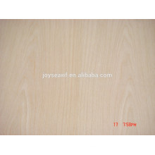 White oak Plywood 4'x8'