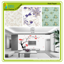 High Quality Home Decor Interior Wall Papers for Printing (RJPB101)