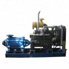 Diesel-Bewässerungswasserpumpe