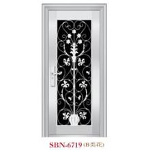 Puerta de acero inoxidable para exteriores (SBN-6719)