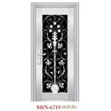 Stainless Steel Door for Outside Sunshine (SBN-6719)