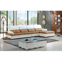 Modern Europe Style Leather Sofa, Home Furniture (928)