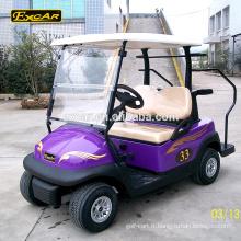 Chariot de golf électrique 2 places bon marché