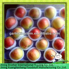 China kleinen roten Gala-Apfel