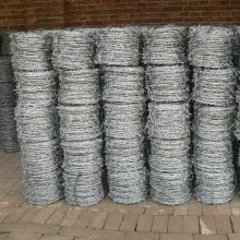 Double Wire Type Galvanized Barbed Wire 10kgs/roll