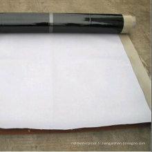 Feutre imperméable auto-adhésif de film de vente chaude de PE / HDPE (OIN)