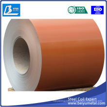 Oiled Cold Rolled Steel Sheet & Strip