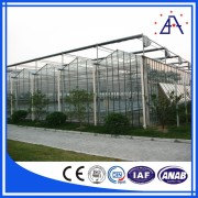 Wide Span Greenhouse Commercial Vegetable Greenhouse