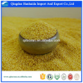 High quality yellow millet for sale with reasonable price and fast delivery !!
