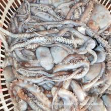 Frozen long-leg octopus 200-300g,300-500g,gutted or material